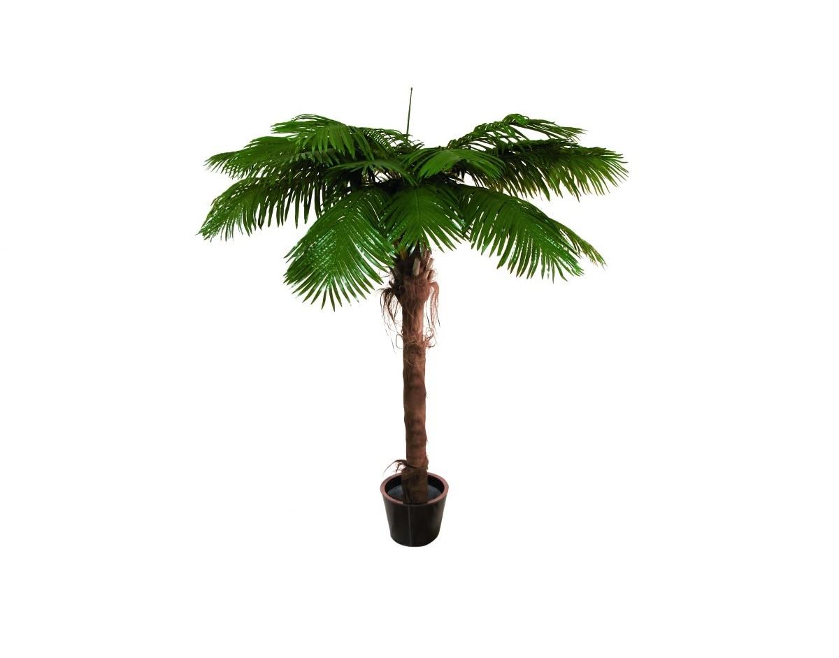 Konstgjorda växter & palmer (ALLA) EUROPALMS   Promix Sweden
