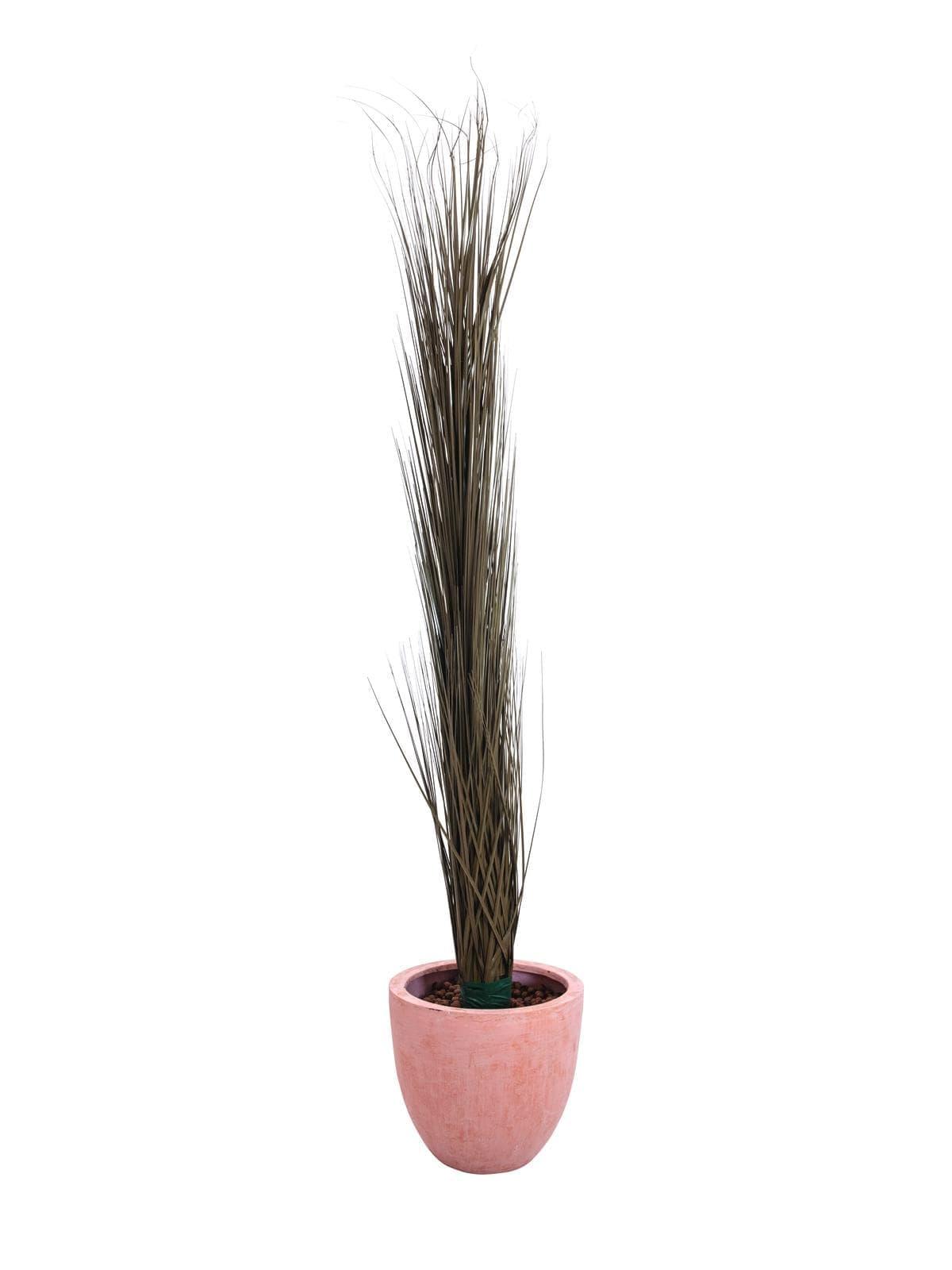 EUROPALMS Reed grass, khaki, artificial,  127cm